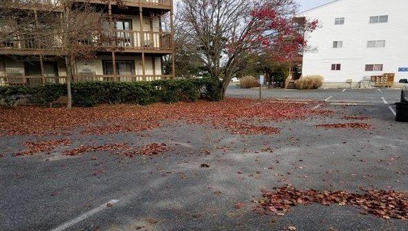 Parking Lot Before Shore Grounds Maintenance